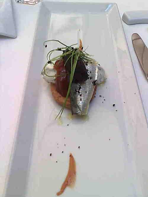 Riff Tartita de sardina marinada