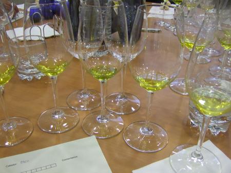 Cata de aceite oliva virgen extra aove