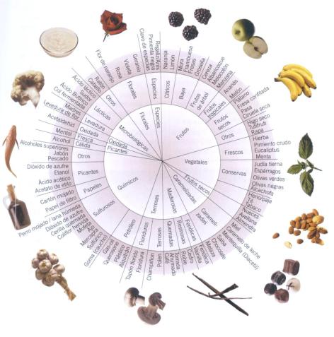 Ruleta de los aromas
