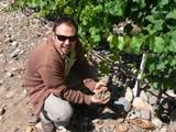 vinos de malbec valle uco lurton