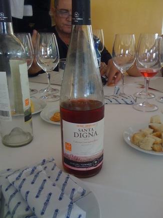 Santa Digna Cabernet Sauvignon Rosé 2012