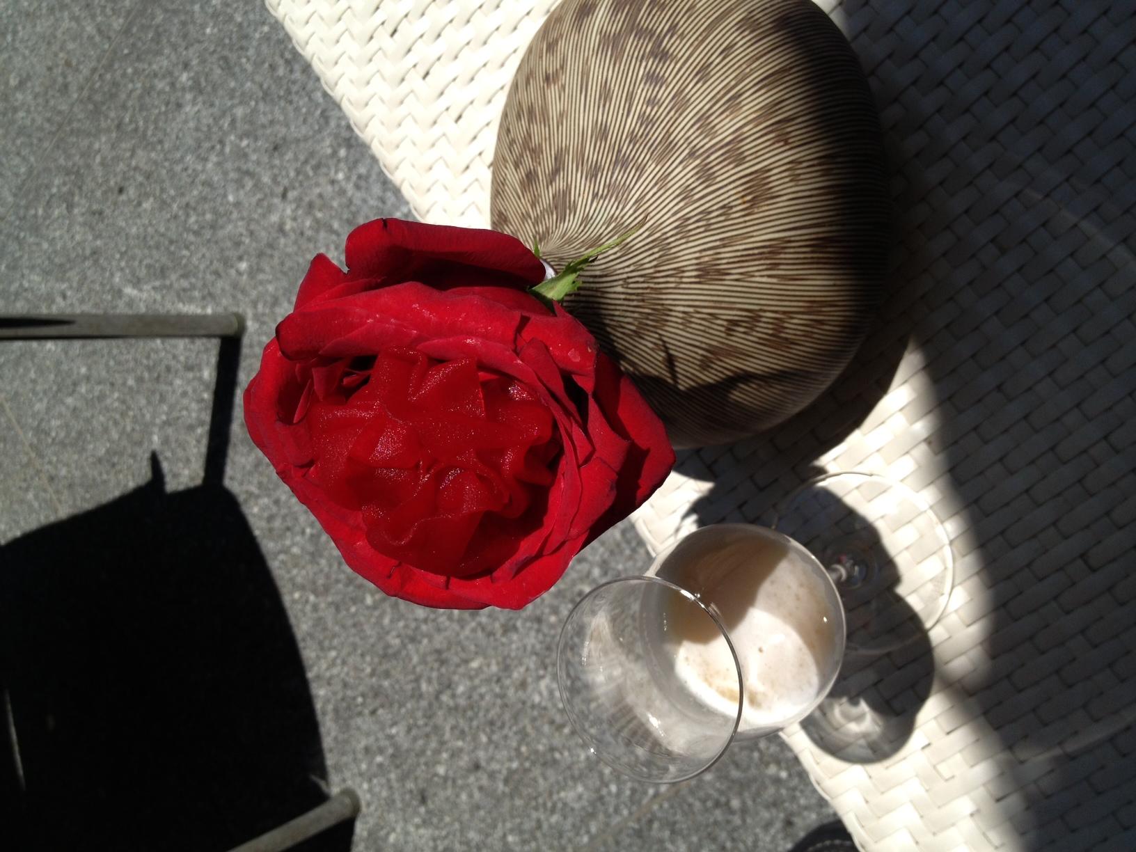 Restaurante en Denia Pétalos de rosa y gin tonic de manzana