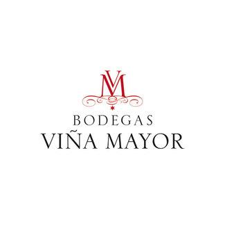 Bodega Bodegas Viña Mayor en Quintanilla de Onésimo