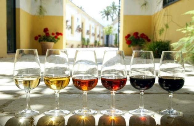 Copas vino de jerez