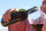 Img 4100.wine bottle col