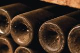 Vino guarda beber ano 2015 vinos col