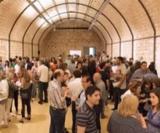 Navarra wine experience col