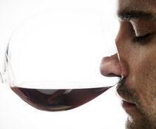 Hombre maduro bebiendo vino logo