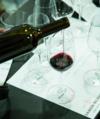 Cata ramon bilbao vinos terrun%cc%83o thumb