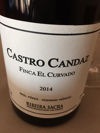 CastroCandaz2014