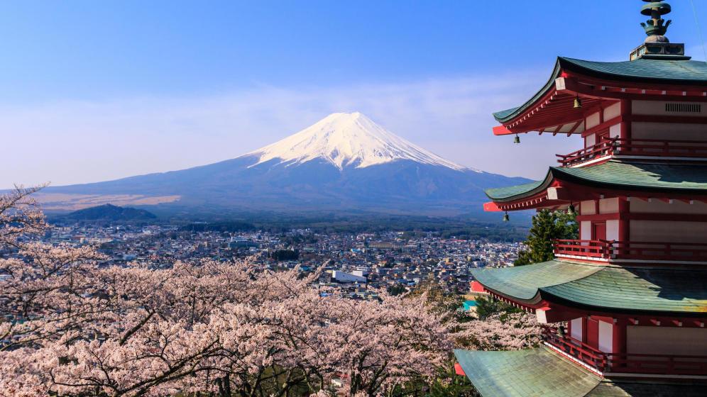 Japon vuelve a mirar al campo revivir la agricultura para recuperar la felicidad 1