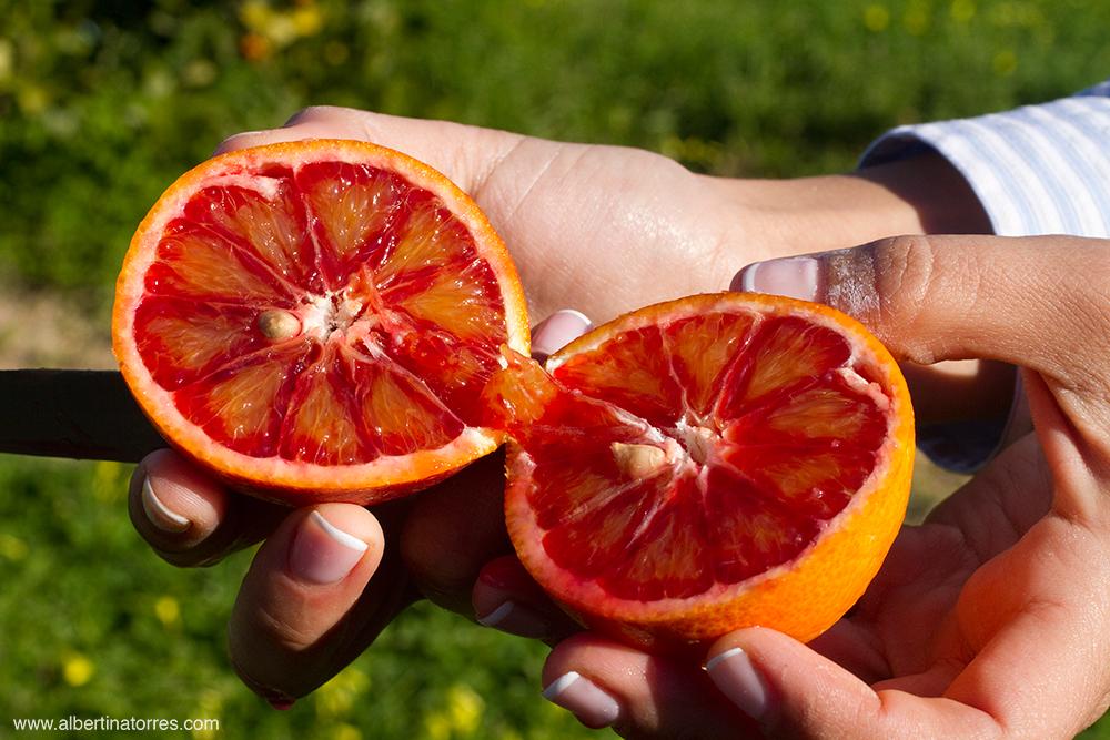 Citrus Sinensis Moro
