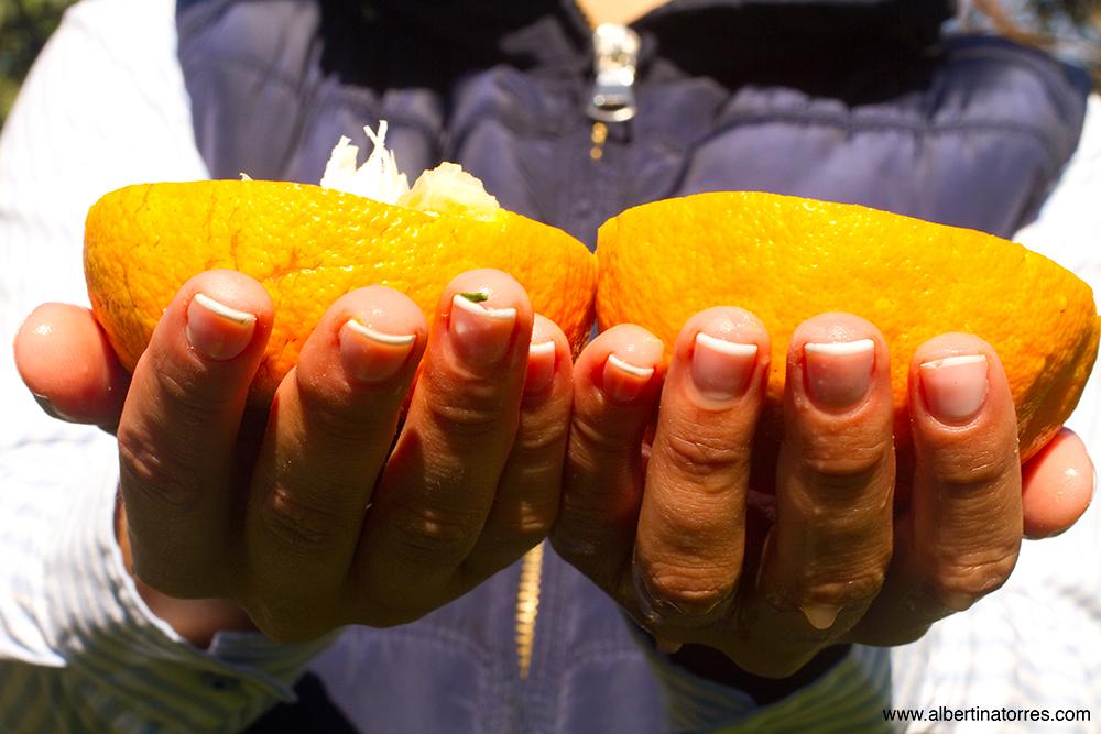 Mucha Vitamina C