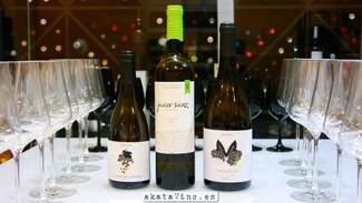 Javier Sanz Verdejo 2014 90 puntos Guía AkataVino WineXtreme.