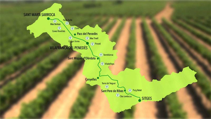 Mapa La carretera del vi