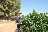 Rodolfo vin%cc%83edo finca alfaro2 col