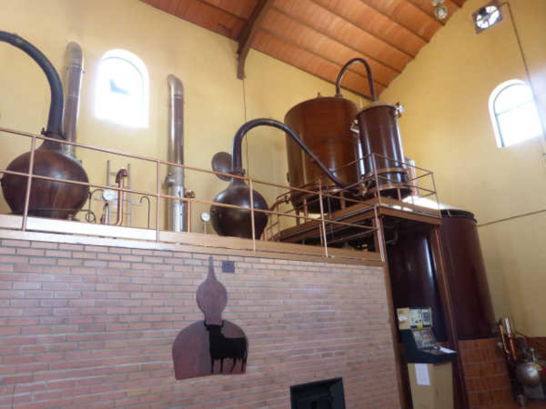 Alambiques de cobre de la destilería de Osborne en Tomelloso