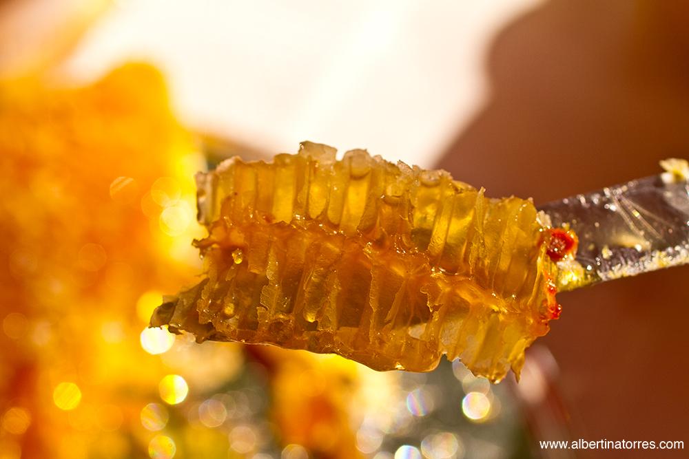 Corte de celdilla panal de abejas