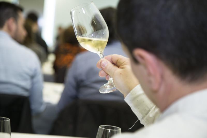 cata-champagne-verema-valencia-2017-6