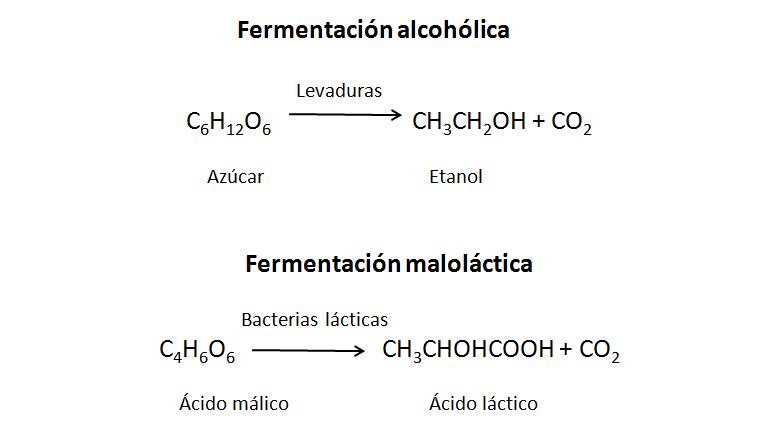 Fórmulas fermetación
