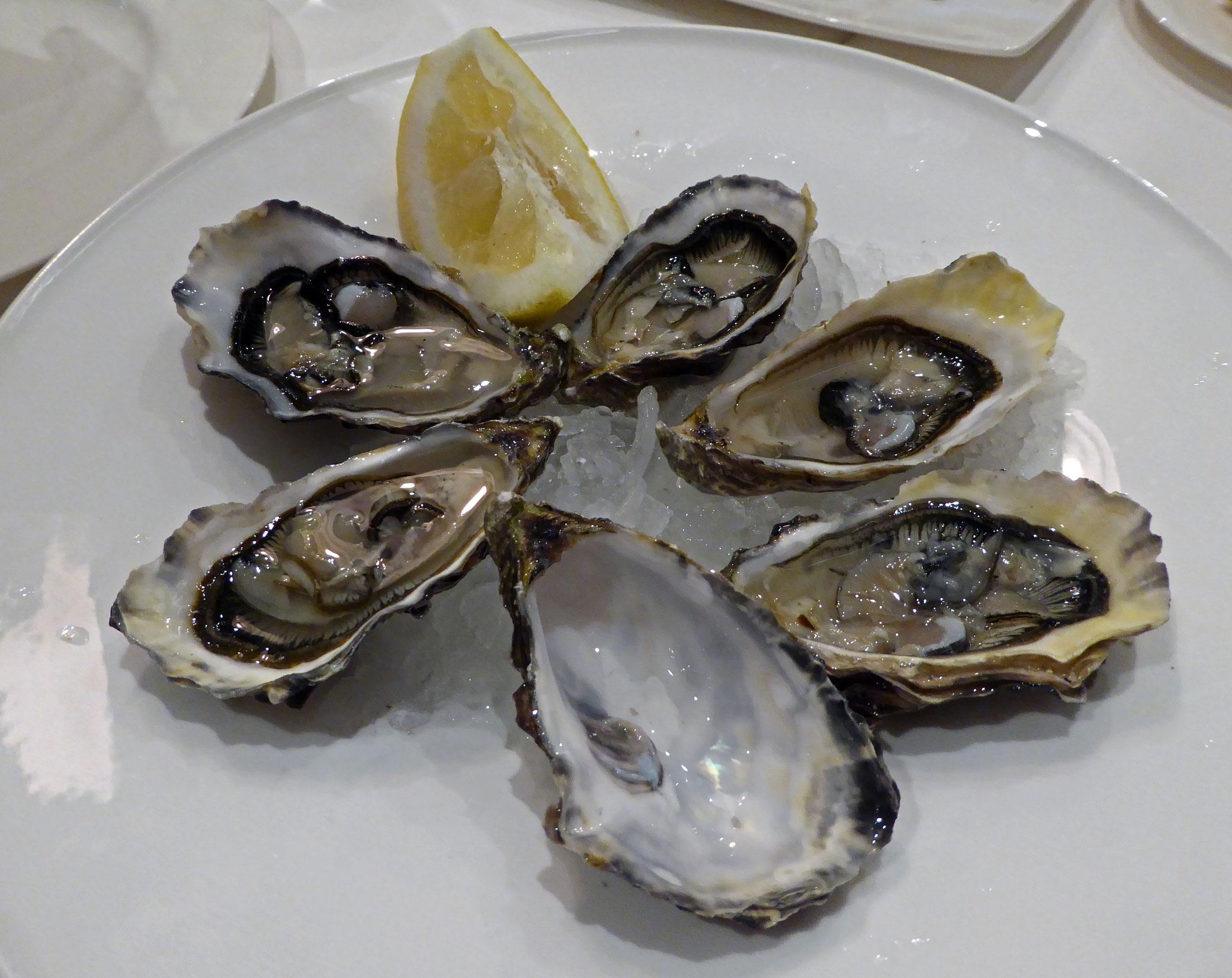 Restaurante en San Vicente de la Barquera Media docena de ostras de San Vicente de la Barquera