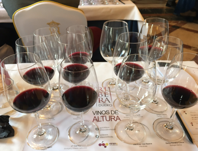 Cata Ribera del Duero en la Experiencia Verema Sevilla