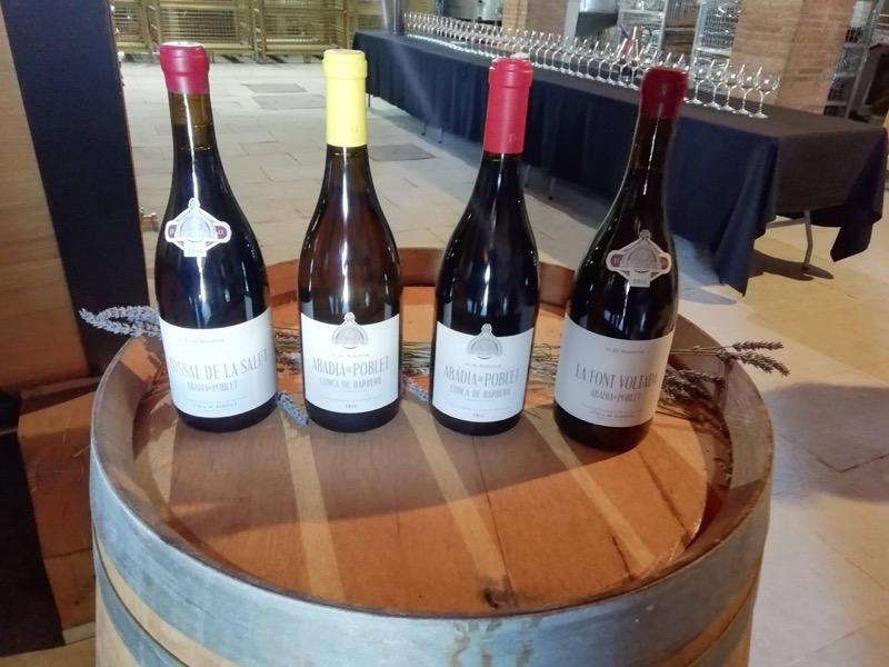 cata vinos poblet
