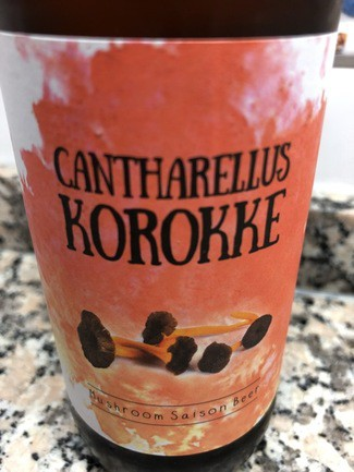 Cantharellus Korokke mushroom saison beer