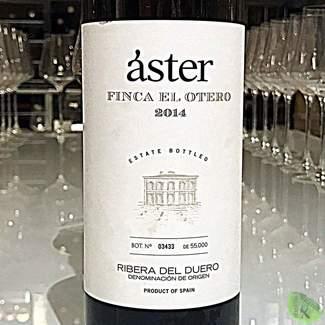 Áster Finca el Otero 2014 | 94 Pts. Guía AkataVino