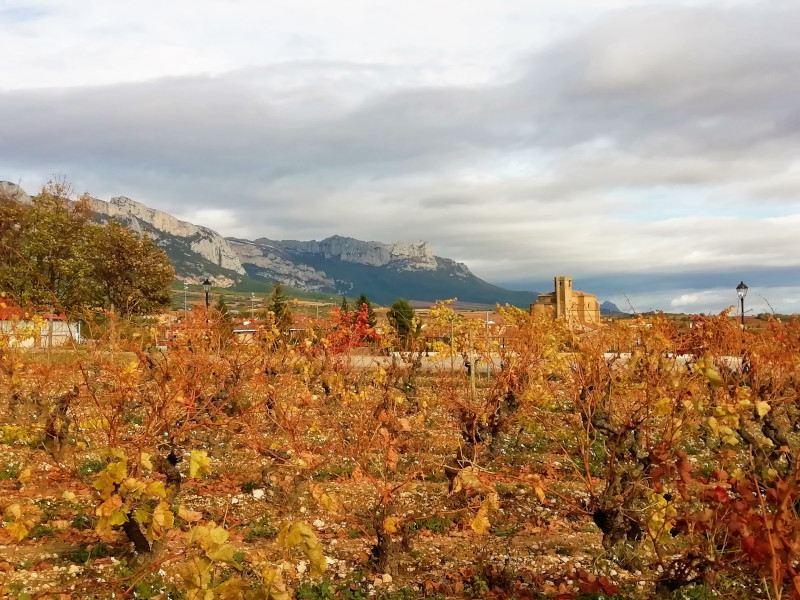 Iglesia desde Samaniego en Rioja