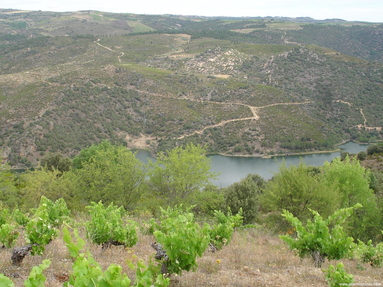 Rio Duero y Viñedos de Bruñal