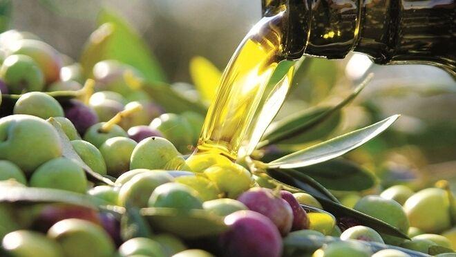 Aceite de oliva y de orujo de oliva