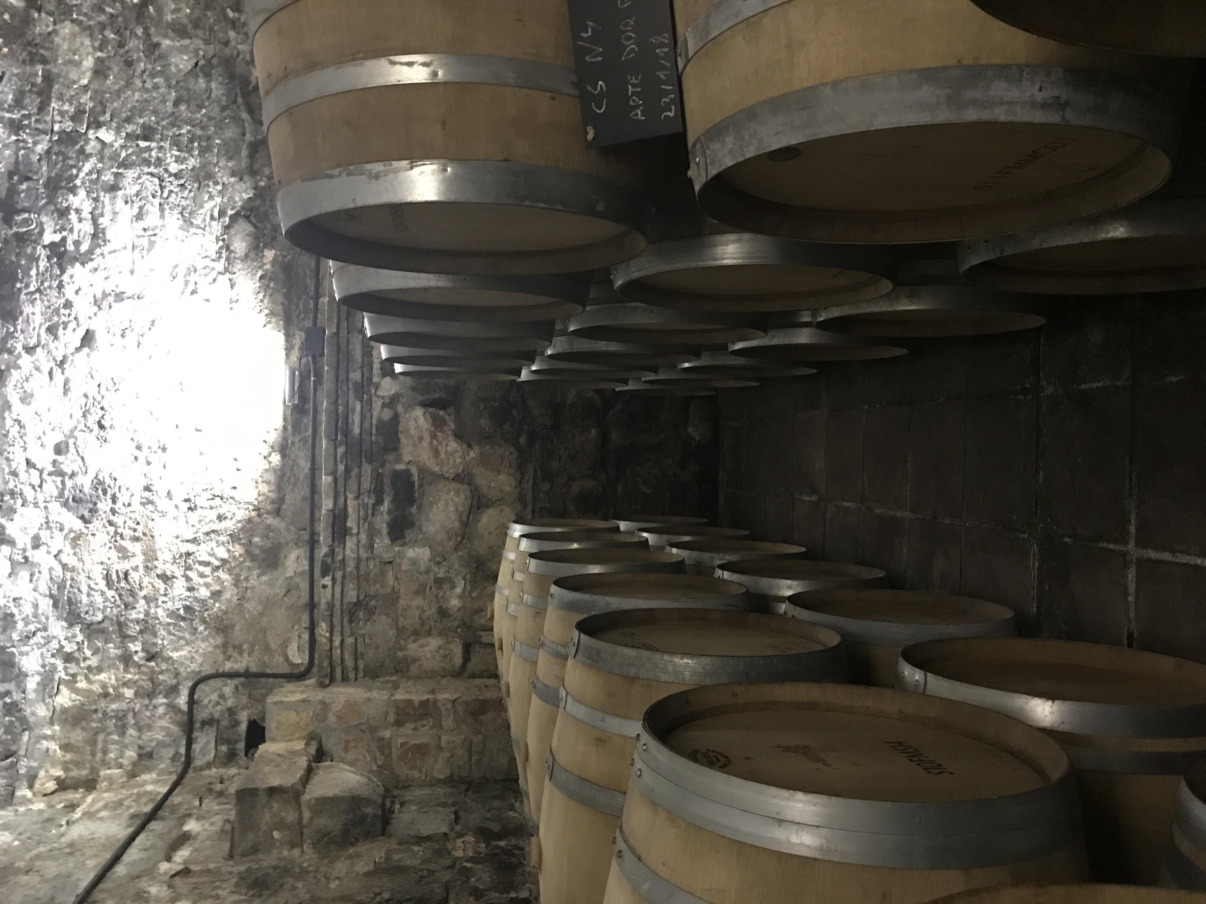 De aquí sale este fantástico vino que vamos a catar esta tarde.....